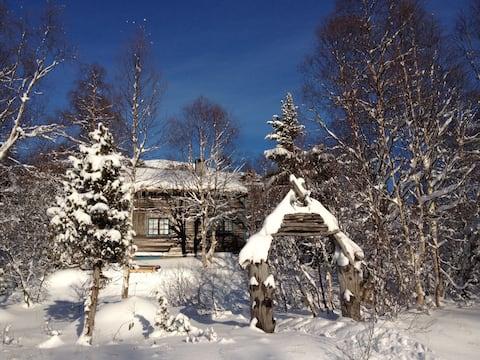 Cosy wooden cabin near Geiranger