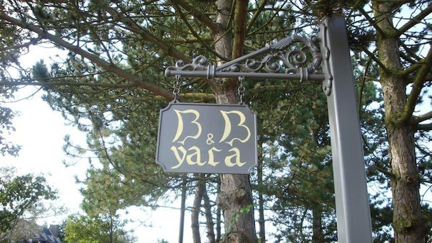 Bedandbreakfast YACA -DELVAUX