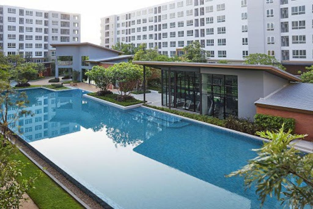 Large swimming pool + Well equipped gym (free access)