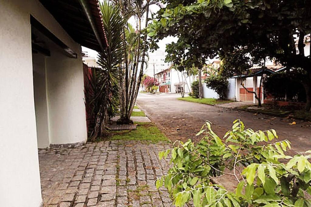 Rua tranquila e arborizada, em área residencial.