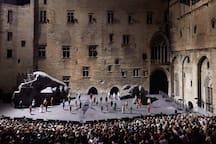 Tourisme à proximité (juillet) - Le festival d'Avignon (à 5min de La Maison Joffre)