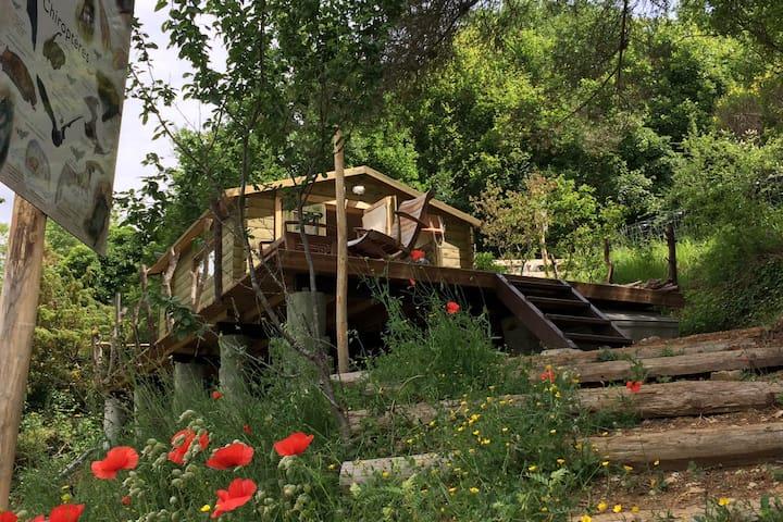 Gaia Luna, site écologique dans les Alpes.