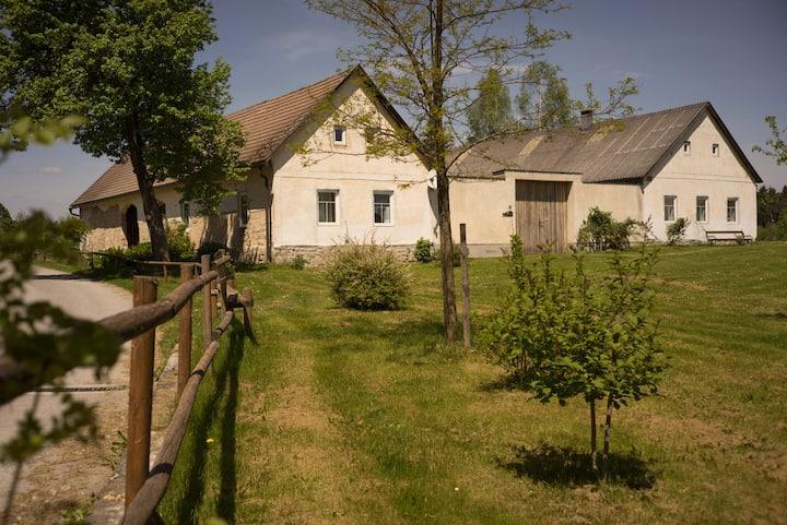 Beautiful Lakeside Cottage House in Waldviertel