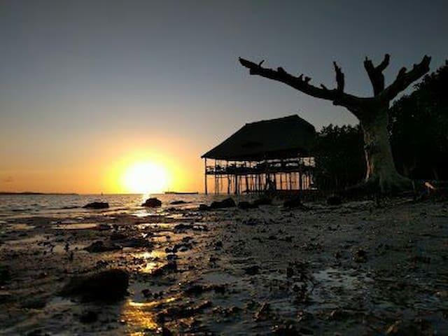 PEMBA ISLAND BEACHES