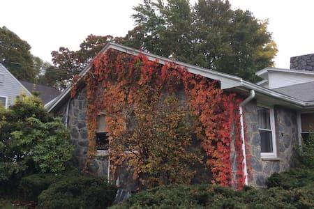 Suburban house - Newton