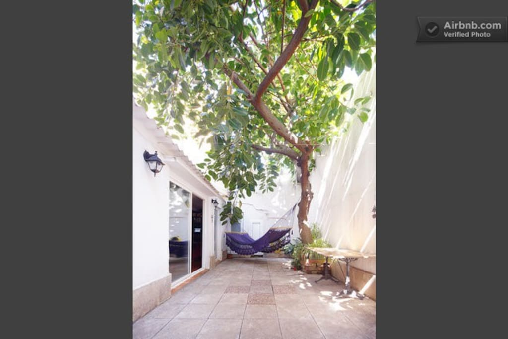 How would be living in a hammock under a ficus tree? Experience it!