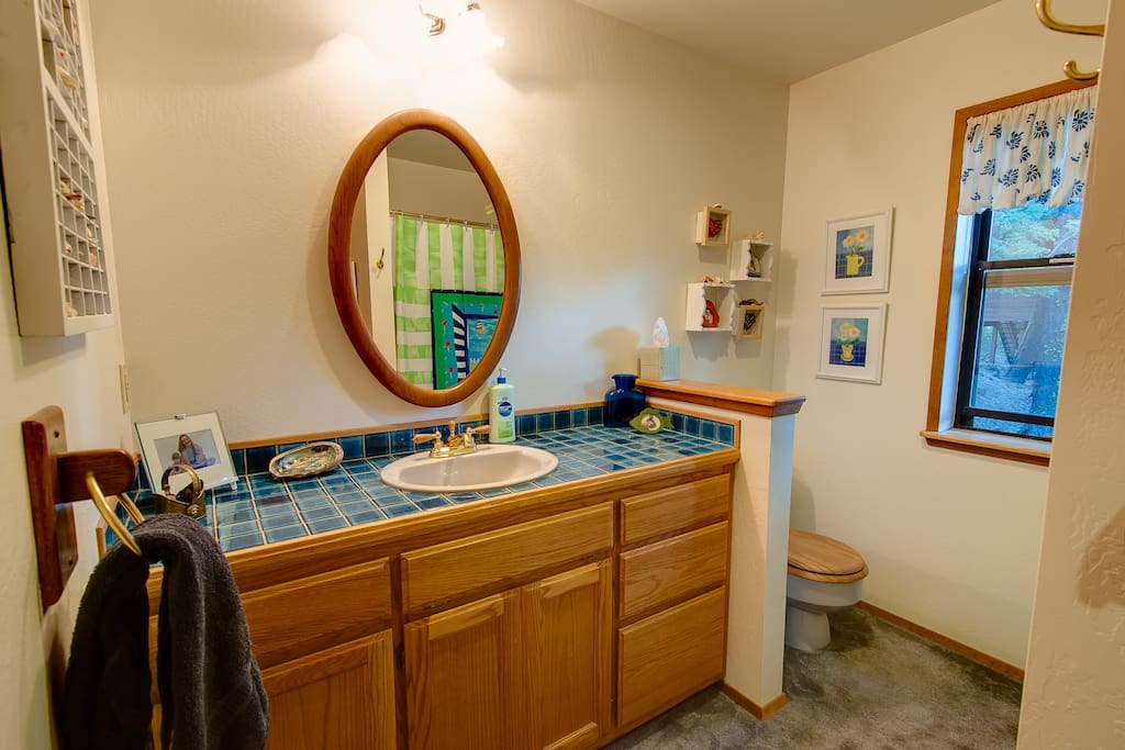 Downstairs bath, toilet and shower/tub