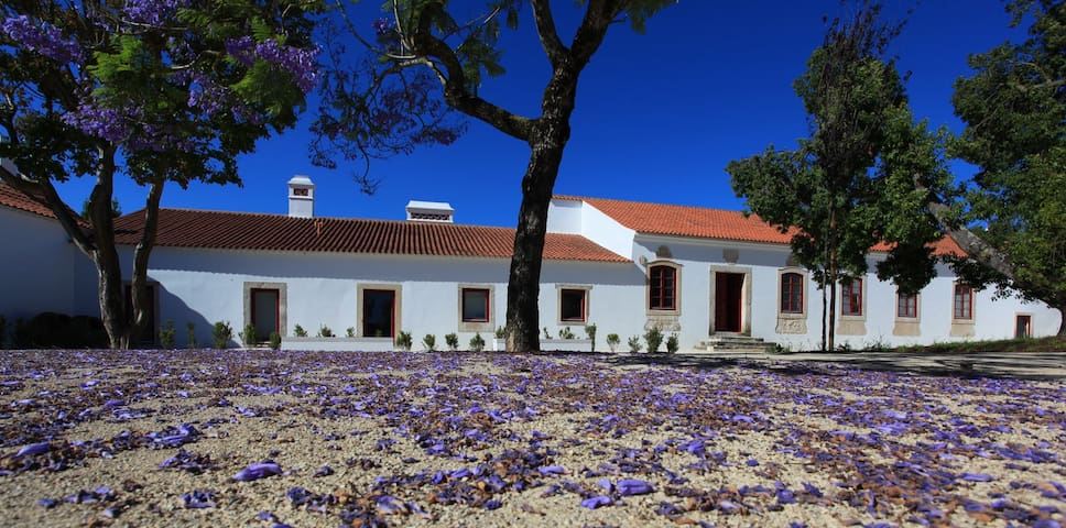 Stunning 18th Century Manor House - Manique do Intendente - Bed & Breakfast