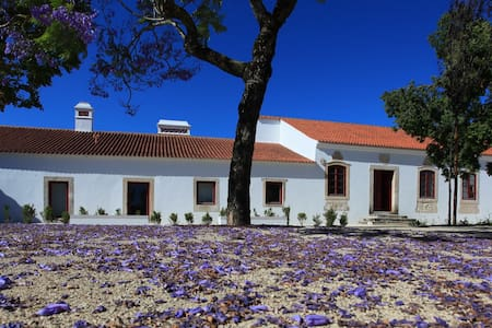 Stunning 18th Century Manor House - Manique do Intendente