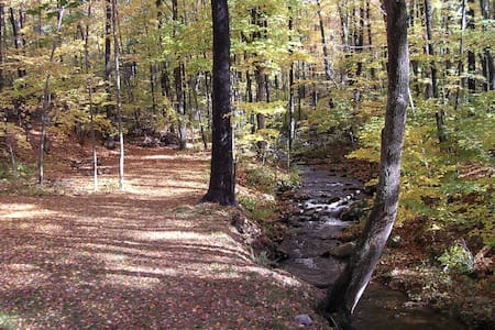 Streamside Apartment Near Amherst - Belchertown - Pis