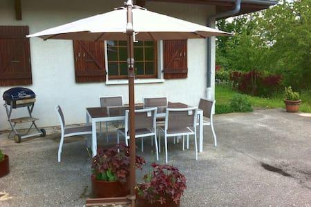 Large apartment near Geneva (Sergy) - Sergy - Lägenhet