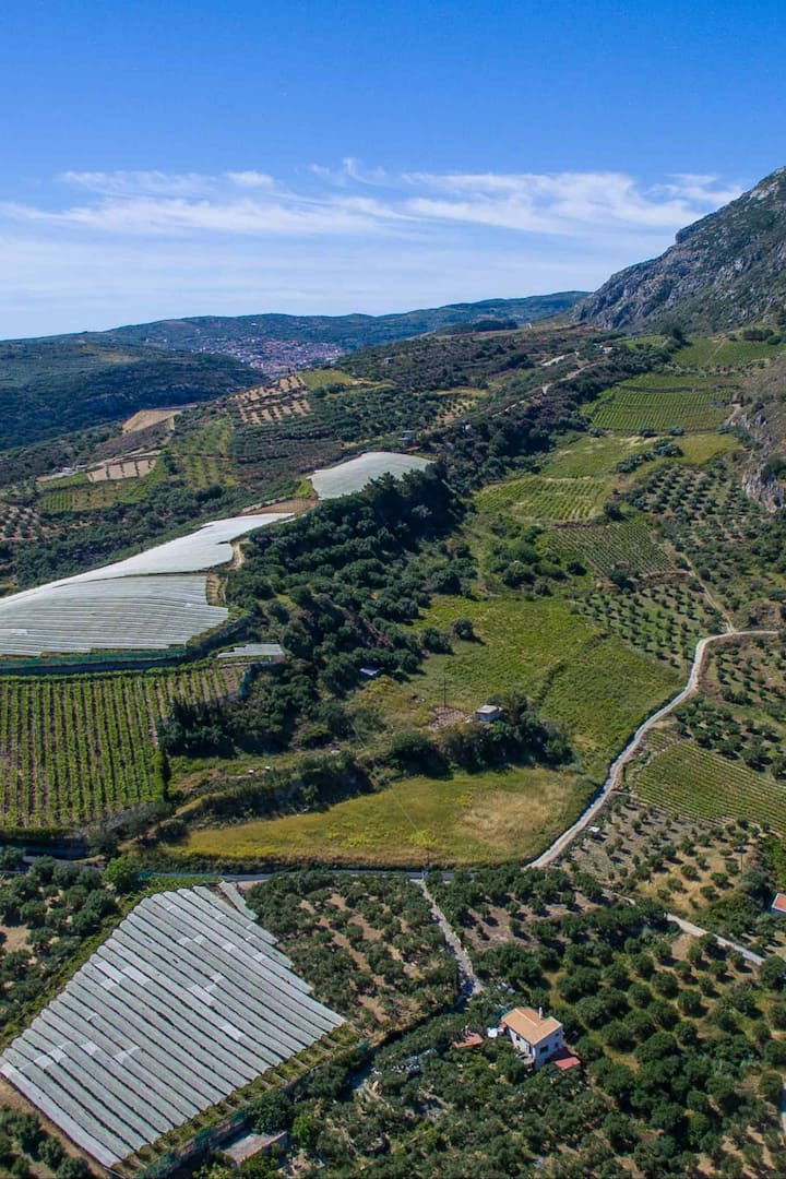 Aerial view of Anemospilia and fields!