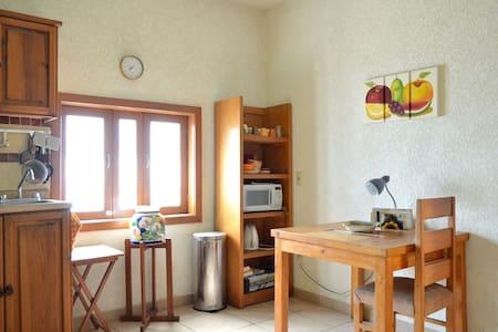 Mexican apartment - Tlaquepaque - 아파트