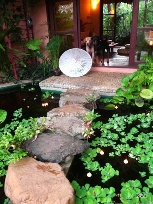 river stone steps over a koi pond