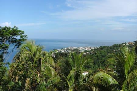 Dominica - Caribbean View Home - Castle Comfort