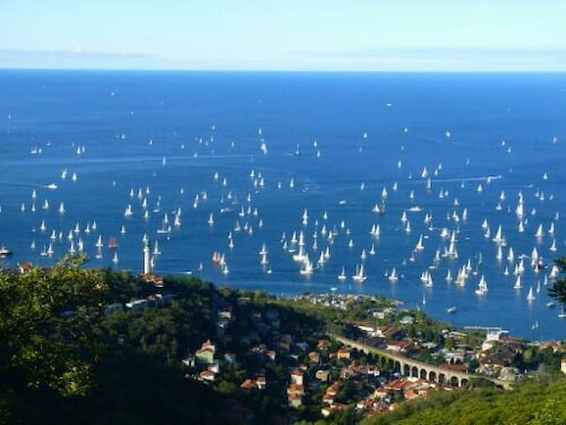 Best views for Barcolana-free parking