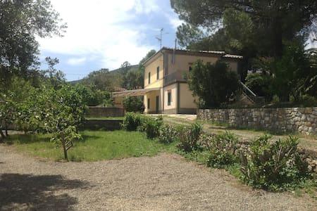 Villa in Elba Island - CAVO