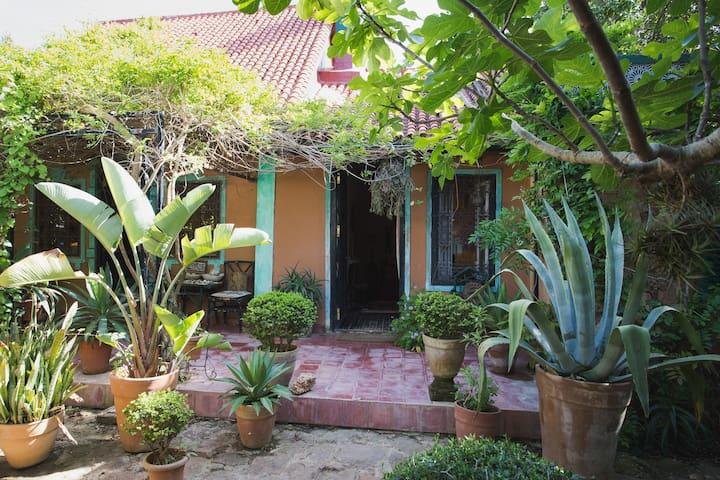 Eccentric country retreat/cottage outside Tangier - แทนเจียร์ - บ้าน
