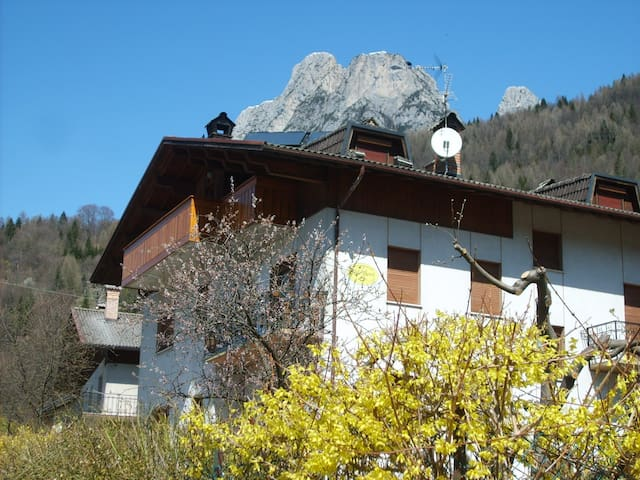 Welcome in B&B Sol Fiori Dolomities - Agordo - Bed & Breakfast