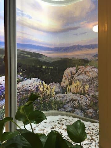 Groovy 2-room Retreat -- Denver/Boulder - Erie - Dom