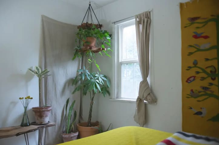 Plant-Filled Bedroom in Georgetown Garden Cottage