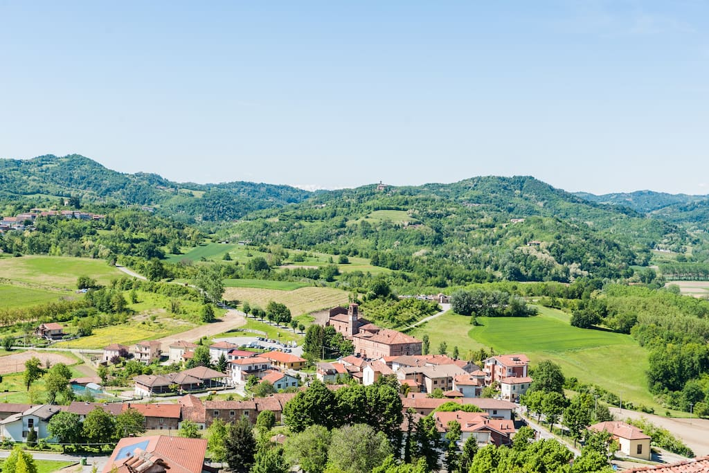 Hills and vinyards of Monferrato