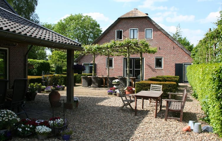 Kamer 2: Kip - Utrecht - Bed & Breakfast
