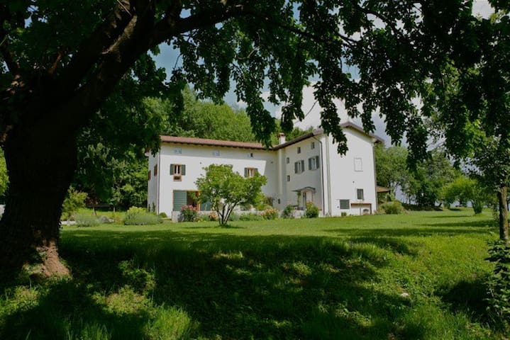 Ospitalità in collina - double - Moruzzo - Bed & Breakfast