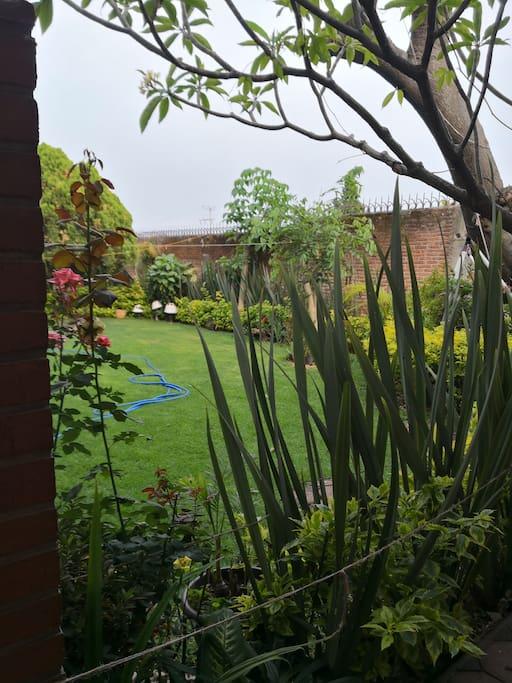 Jardín frente a la habitación