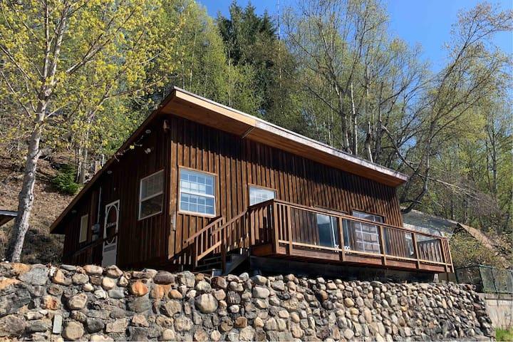 Cozy Cabin on Mabel Lake
