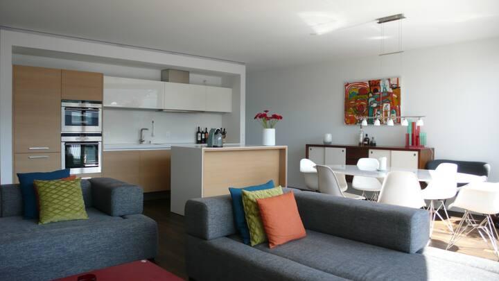 Luxury Loft/Penthouse in Zürich