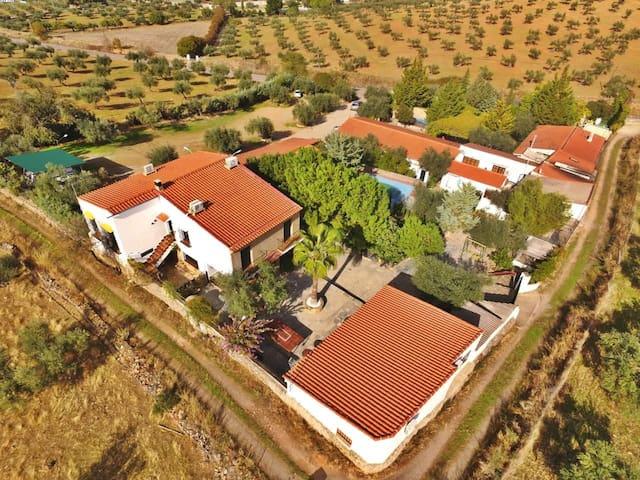 Coqueto apartamento en la Sierra Segedana