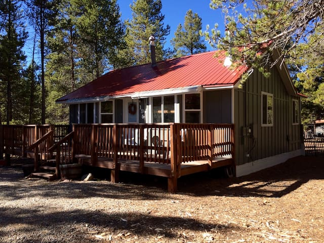 Affordable, Cozy, Cabin in Woods - Leadville - Rumah