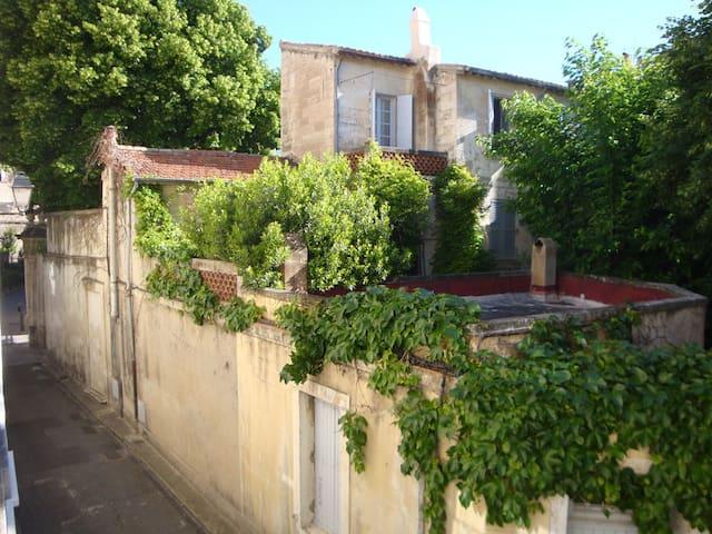 Avignon historique: Du charme