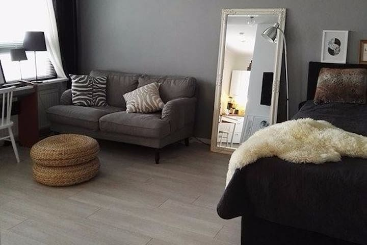Cute and quiet home with good connections - Helsinki - Byt