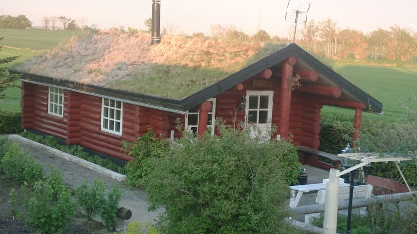Live in a Grass-Roof Log Cabin! - Nykobing Mors - Cabana
