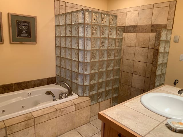 Jacuzzi tub and walk-in shower in master bedroom.