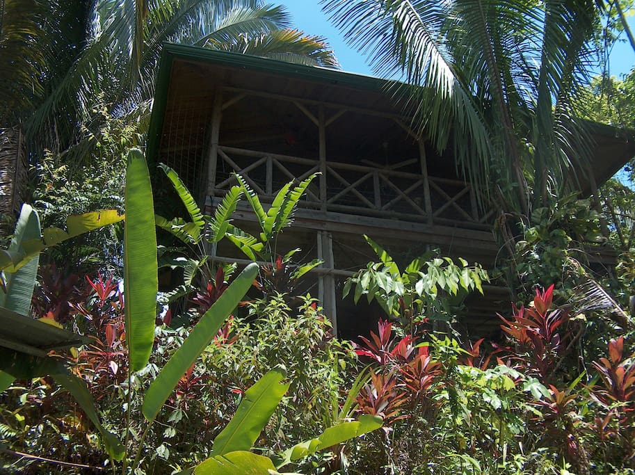 Luxuriant Garden Chalet East Chalet In Affitto A Quepos