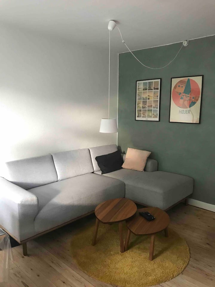 Lovely apartment, close to public transportation