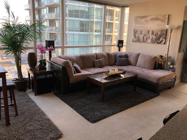 BEAUTIFUL LARGE CONDO (pool-hottub and full gym )