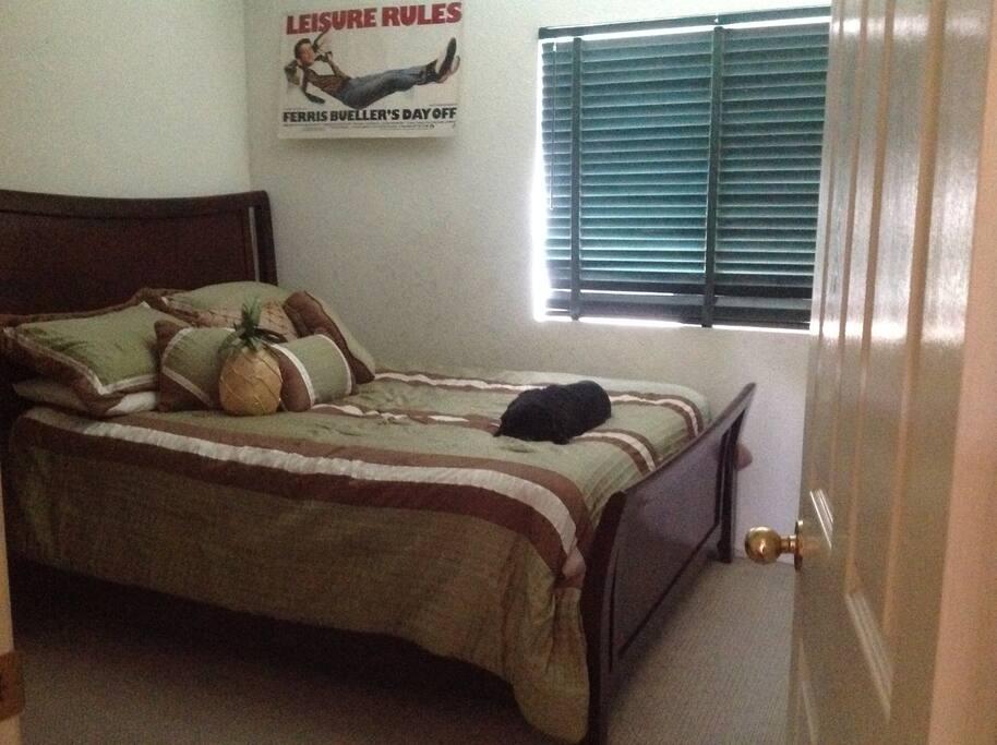 Guest bedroom-Queen bed