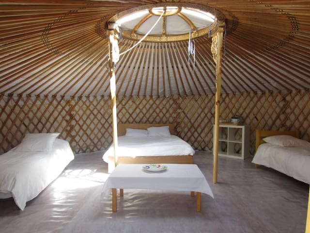 yurt - nature- solidarity - Loutzviller - Yurt