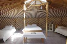 yurt - nature- solidarity