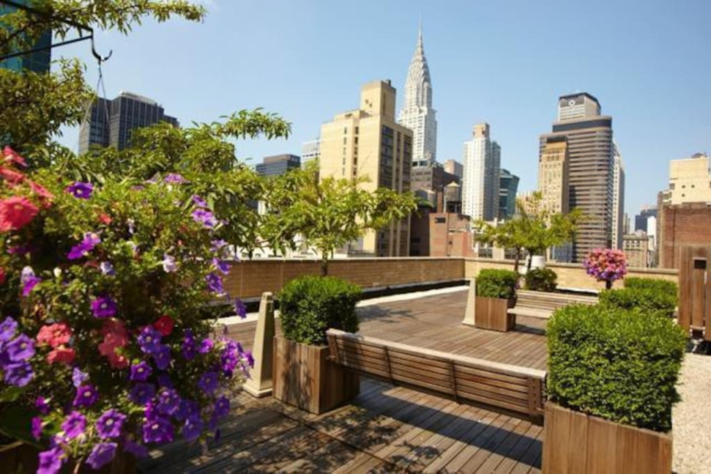The roof deck with amazing city views