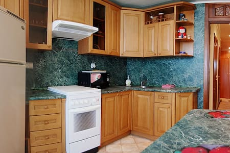 1 bedroom apartment in the center - Minsk