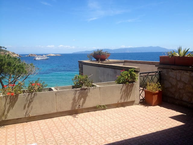 House on sandy beach Cannelle  - Isola del Giglio - Apartemen