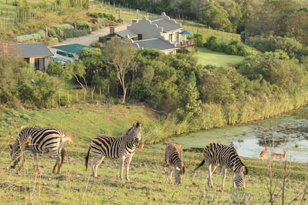 Cozy cottage with wildlife views and lions' roar