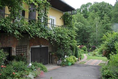 Wohnen im Weinland Weststeiermark - Wies - Wohnung