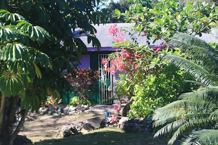 Nature lover's dream villa - Nicholls Town
