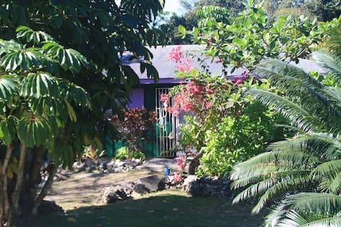 Nature lover's dream villa